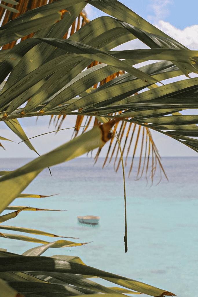 Curacao corona